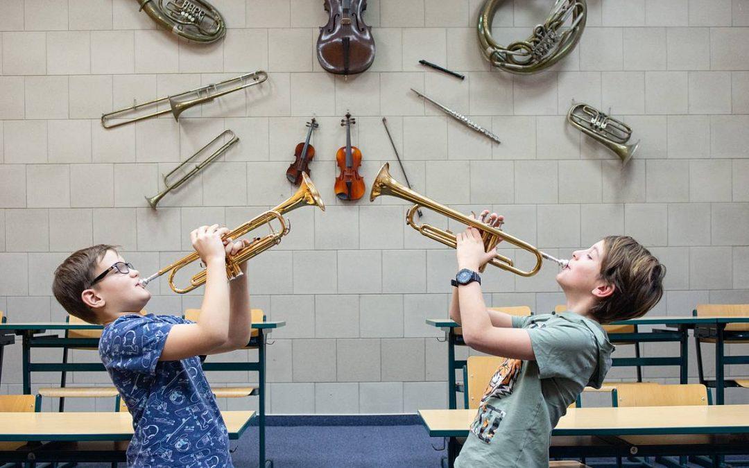 Organizace výuky včervnu 2020 – dechové nástroje, zpěv, TO, LDO